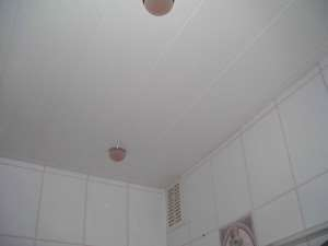 Металлическая вагонка на потолок