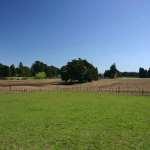 Правила купле – продажи земельного участка