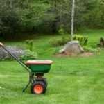 Тонкости внесения удобрений для газона