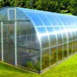 Теплицы из поликарбоната – выбор большинства современных огородников