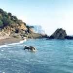 Лучший отдых на море в «Морской Волне»