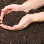 AGRO — органические удобрения в Казахстане