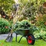 Sadoman — самая полезная информация для садоводов