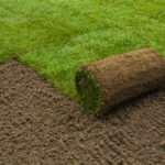 Какой он, идеальный рулонный газон?