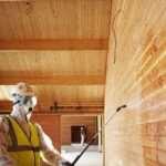 Важность обработки древесины антисептиком
