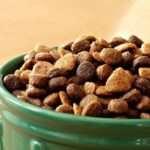 «My Family» — качественный и полезных сухой корм для собак