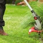 Триммеры для травы: особенности, разновидности