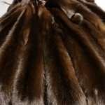 Шкурки соболя — доступный роскошный и стильный мех