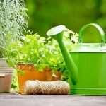 Товары для сада и огорода от «SevenMart»