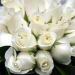 Быстрая и качественная доставка цветов от Букетик 24