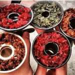 Популярные виды табака для кальяна
